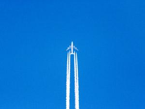 Flygresor till alla världens hörn